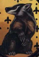 File:Badger.jpg