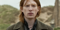 William Weasley