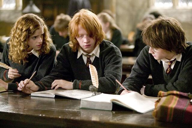 File:Hermione-granger-ron-weasley-harry-potter-hp4-study-6x4.jpg