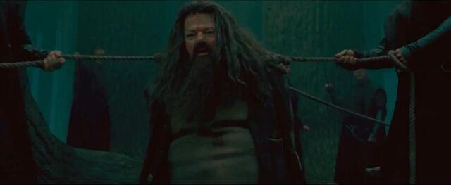 File:Hagridwraped.JPG