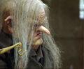 Harry Potter films Goblin 06.jpg