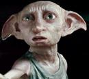 Dobby's clothes