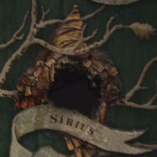 На семейном дереве Блэков