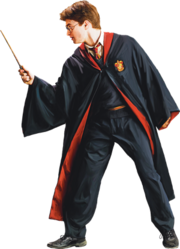 Harry in Robe with Wand (Painting) - Harry Potter and the Half-Blood Prince™