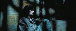 Harry Potter Prisoner Azkaban Sirius
