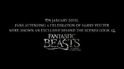 Fantastic Beasts and Where to Find Them - Highlight Reel from A Celebration of Harry Potter HD