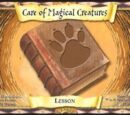 Care of Magical Creatures (Trading Card)