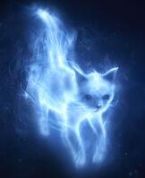 Patronus Cat2