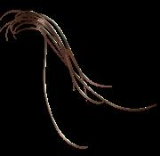 File:Hair-lrg.png