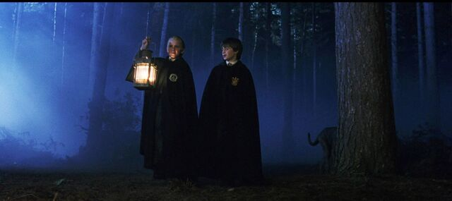 File:Harry-draco forest.jpg