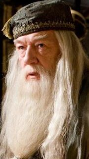 DumbledoreCropped.JPG
