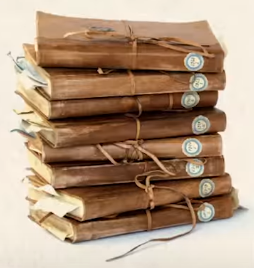 File:Newt Scamander's notebooks.png