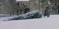 Hagridtree