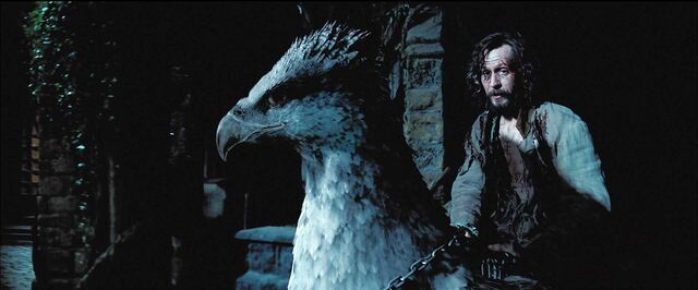 File:Harry Potter Prisoner Azkaban sirius buckbeak.jpg