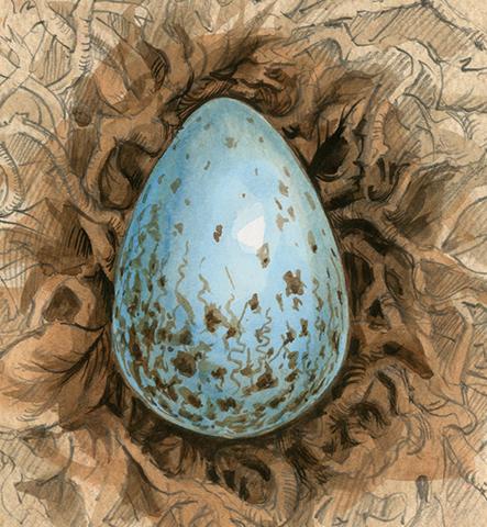 File:Phoenix Egg.png