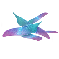 File:Fairy-wings.png
