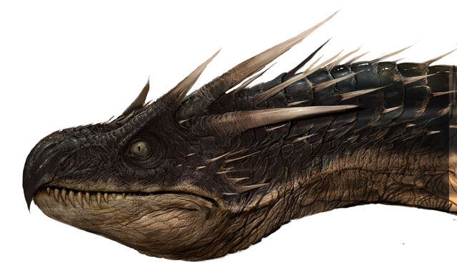 File:Dragon WB F4 HeadDetailHorntail Illust 100615 Land.jpg