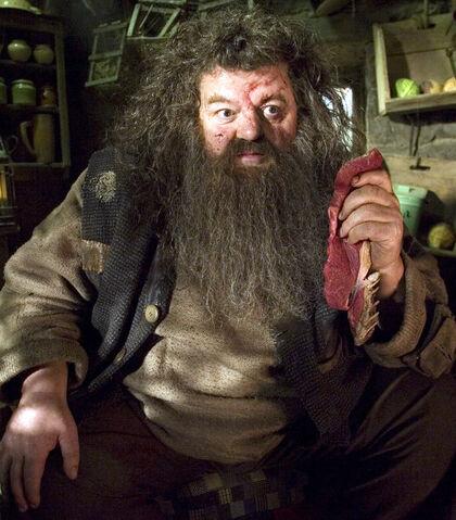 File:Hagridtalk.jpg