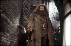 HagridKnockturn.jpg