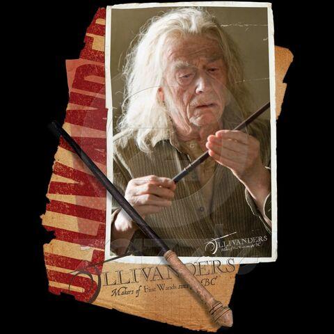 File:Harry-Potter-BlogHogwarts-HP7-2-35.jpg