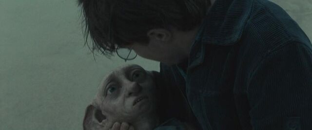File:Harry and Dobby.JPG