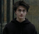 Harry Potter (DM)