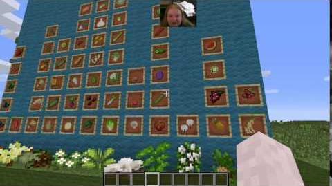 HarvestCraft 1.7.10 Tutorials - Gardens!
