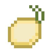 File:Onion.jpg