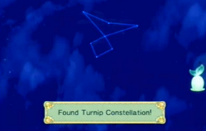 RFF - Turnip Constellation