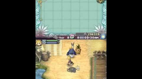 Rune Factory 3 A Fantasy Harvest Moon Labyrinth Part 2