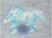 RF4 Silver Wolf