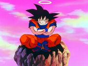 Goku meditate full lotus episode 208