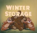 Winter Storage