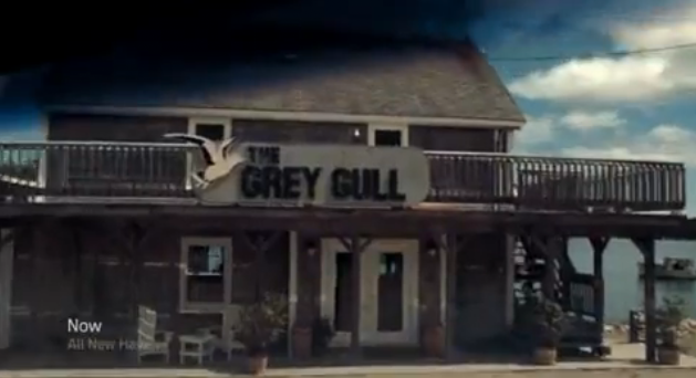 File:Grey Gull.png