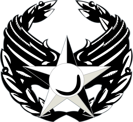 File:Air Force Commander's Insignia.png