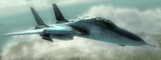 File:F-14B Bombcat.png
