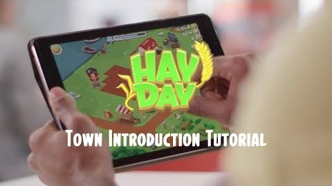 Hay Day Town Introduction Tutorial