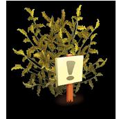 File:Coffee Bush Revival.png