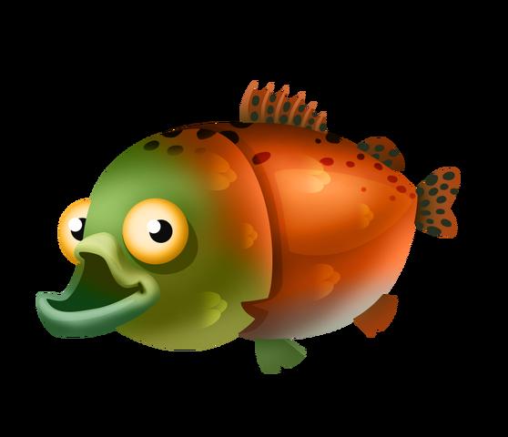 File:Sockeye Salmon.png