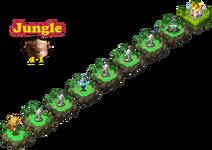 HMNM-Jungle-1-1