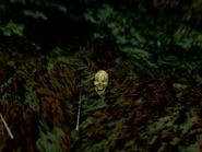 Ee-burma1-skull3