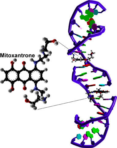 File:2000px DNA intercalation by mitoxantrone based on 4G0V.png