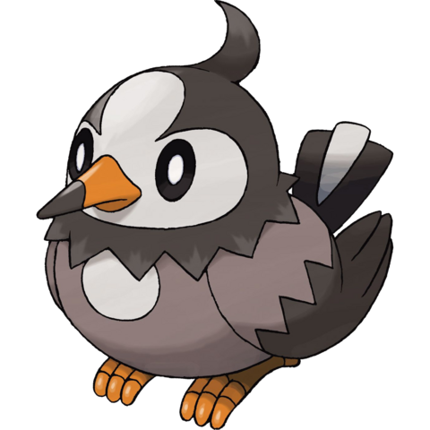 File:Starly.png