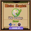 Wild Winnings 4