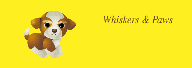 File:Sanrio Characters Whiskers & Paws Image003.png
