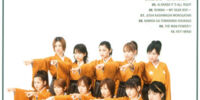 Eizou The Morning Musume 3 ~Single M Clips~