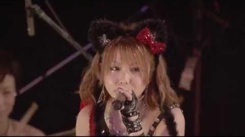 LoVendoЯ『SEXY BOY~そよ風に寄り添って~』(Live ver)