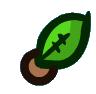 Palm Tree Seed