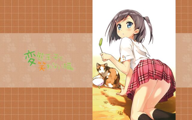 File:CatandCat.jpg