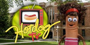 HDTV Logo